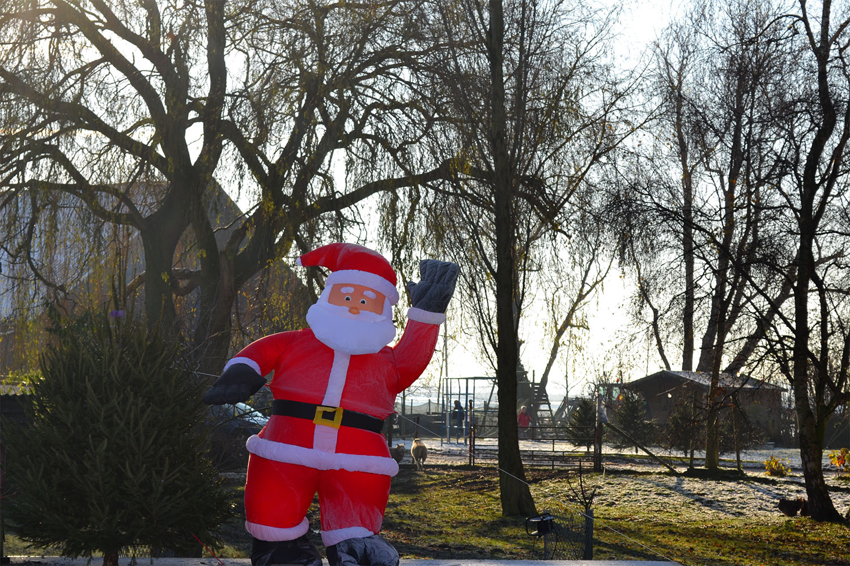 Nordmann Excellent kerstbomen Amsterdam